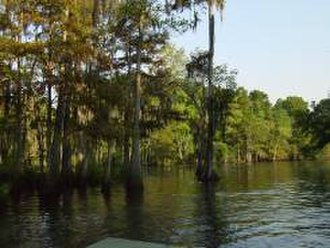 Sabine River (Texas–Louisiana) - The Sabine River in Orange, Texas