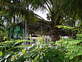 SanMateo,Rizaljf5665 09.JPG