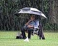 Sandwich Town CC spectator in the rain at Sandwich, Kent, England 01.jpg