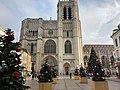 Sapins de Noël devant la cathédrale de Sens.jpg