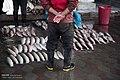 Sari Fish Market 2015-03-15 07.jpg