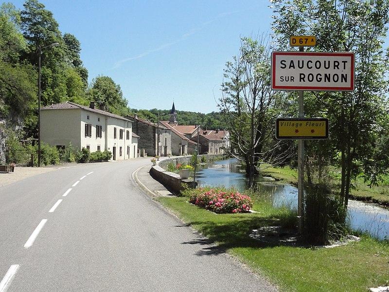 Saucourt, D67a, panneau d'entrée et bief du Rognon.