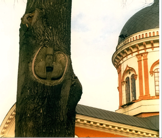 Noul Neamț Monastery - Image: Sc 0016f 2c 2