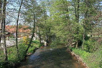 Lauter (Rhine) - The Lauter between Scheibenhard and Scheibenhardt