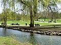 Schwabinger Bach Englischer Garten Muenchen-4.jpg