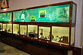 Scientific Instruments - Jagadish Chandra Bose Museum - Bose Institute - Kolkata 2011-07-26 4020.JPG
