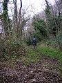 Scout Crag footpath - geograph.org.uk - 1586544.jpg