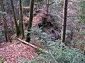 Seegräben-Sack - Heidenburg IMG 5028.JPG