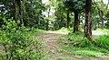 Seethragund estate - panoramio (1).jpg