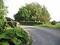 Selley Bridge - geograph.org.uk - 252185.jpg