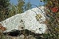 Serpentinite (East Dover Ultramafic Body, Ordovician; Copperhead Road quarry, near East Dover, Vermont, USA) 4.jpg