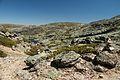 Serra Da Estrela Walk 15 (18204368316).jpg