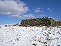 Sheepfold above Wellhopehead - geograph.org.uk - 136478.jpg