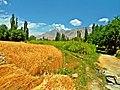Shiger valley.jpg