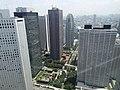 Shinjuku from Tokyo Metropolitan Government Building - panoramio.jpg