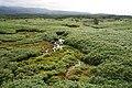 Shiretoko Goko Lakes03s3.jpg
