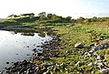 Shore of Loch Craignish - geograph.org.uk - 457055.jpg