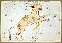 An old drawing depicting a lynx and telescope overlaying a chart of stars