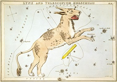Lynx (constellation)
