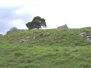Badenyon Castle - Image: Site of Badenyon Castle geograph.org.uk 446404