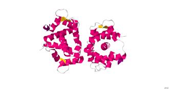 Myosin light-chain kinase - Image: Sk MLCK