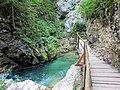 Slovenia - Gole di Vintgar (11732085444).jpg