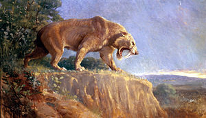 Charles R. Knight - Smilodon from 1903.