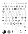 Snow flakes Harvey meteorology.png