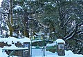 Snow on Oaklands (14830916292).jpg