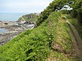 South West Coast Path near Ilfracombe - geograph.org.uk - 1430471.jpg