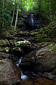 Spring-waterfall-glade-creek-wv - West Virginia - ForestWander.jpg