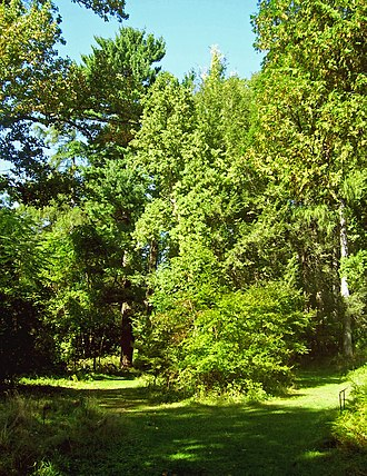 Springside (Poughkeepsie, New York) - Landscape and curving pathway near cottage site