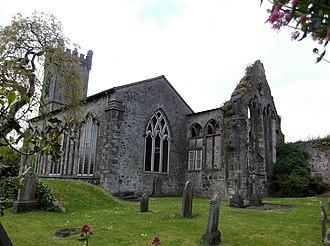 St. John's Abbey, Kilkenny - Image: St John Priory Kilkenny