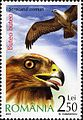 Stamps of Romania, 2007-031.jpg