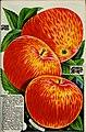 Stark fruit book (1901) (20375803759).jpg