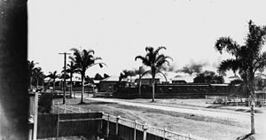 Shorncliffe railway line - Image: State Lib Qld 1 140943 Steam train crossing Palm Avenue, Shorncliffe, Brisbane, ca.1925