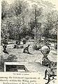 Statesmen (1904) (14758979306).jpg