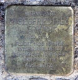 Photo of Siegfried Fred Freund brass plaque