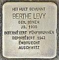 Stolperstein für Berthe Levy (Differdingen).jpg