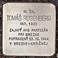 Stolperstein für Tomas Rosenberg.jpg