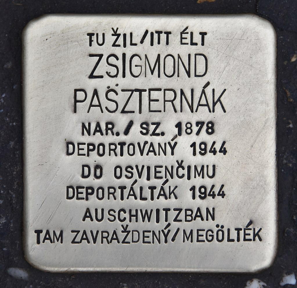 Stolperstein für Zsigmond Paszternak.JPG