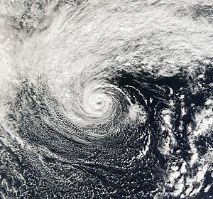 2006 Central Pacific cyclone - The cyclone at peak strength on November 1