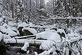 Studeny potok in winter, Slovakia.jpg