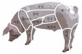 Sus scrofa meat.png