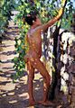 Susan Watkins (1875-1913), Study for Boys picking grapes at Capri (ca. 1906), 1.jpg
