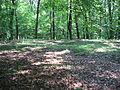 Tarlton Cross Mound from the southwest.jpg