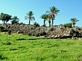 Tell Megiddo Preservation 2009 027.JPG