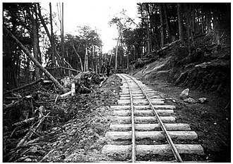 Southern Fuegian Railway - Rail tracks into the forest, 1920.