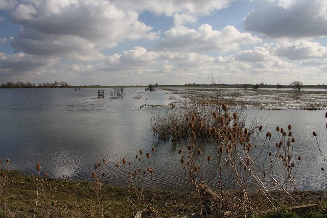 The Ouse Washes - geograph.org.uk - 1189086
