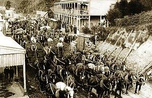 Waikino - The Waikino Express 1889